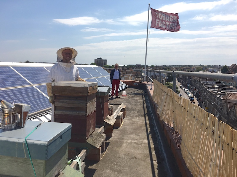 Tim Myers and George Ferguson on the Tobacco Factory roof with their beehives