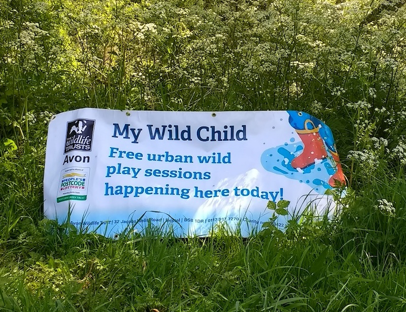 My Wild Child banner in the woods