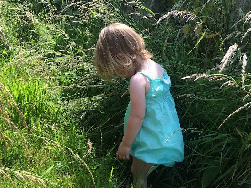 Toddlers invited to get to know the great outdoors